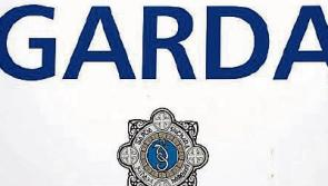 Gardaí appeal for witnesses following fatal collision