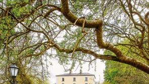 Longford's Viewmount House crowned Georgina Campbell'sCountry House of the Year