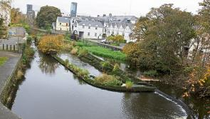 Public meeting to discuss future of Longford's Camlin River