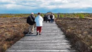 Longford tourism projects given €350k cash injection