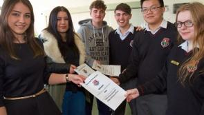 Past pupils return to Kildare town community school for careers speed dating event