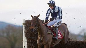 The Punter's Eye: Galway Races Day 4 Tips - Thursday