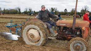 83rd Longford Ploughing Championships to be held in Abbeyshrule