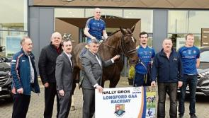 Nally Bros Hyundai in Ballymahon are new sponsors of Longford GAA Race Day