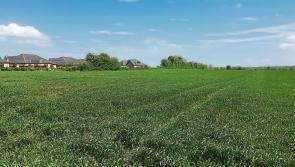 Longford Leader Farming: Mean price of land per/acre increases to  €6,524 in 2018