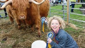 Top class Longford Show hailed as one of the best on record