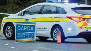 Female pedestrian dies after she was struck by a car