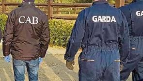 Cross agency gardaí and CAB raids is 'massive' boost to public morale, says JPC chair Seamus Butler