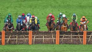 Aintree Day 1 Tips - The Punter's Eye verdict on the first day of the Grand National meeting