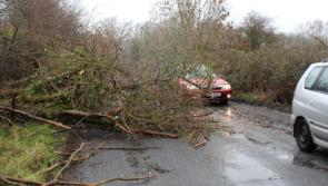 Storm Eleanor Latest: Longford road users urged to be alert to flooding and debris as Met Éireann  updates weather warning