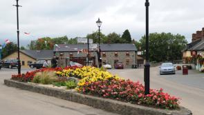 Louth participants advised to be aware of Town and Village Renewal Scheme criteria