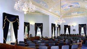 Longford councillors in Seanad bid