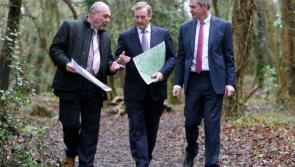 New walking routes at Newcastle Woods, Ballymahon