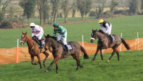 'Point to Point' event to take place in Ballinalee