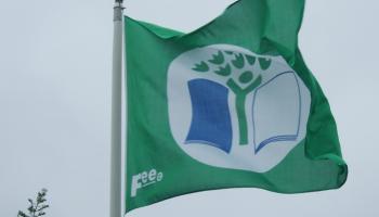 Delight as ten Longford schools awarded Green Flag