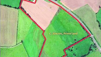 Prime farm land in midlands up for auction with guide price of €9,375 per acre