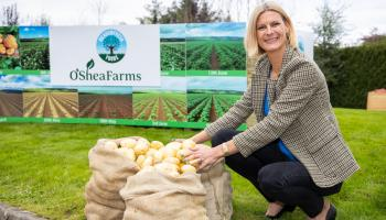 Grow more spuds for chippers says Offaly minister