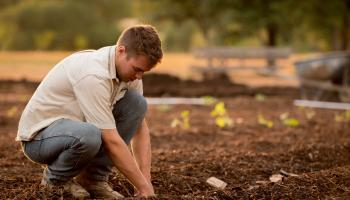 Calls on Government to consider the future of young farmers