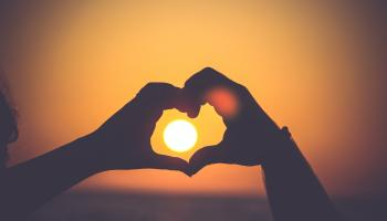 Are you single and looking for love? New RTÉ show The Love Experiment could be for you