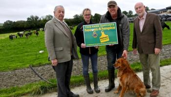 Over 100 animals sold for Midlands Hooves4Hospice project