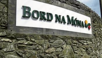 Midlands needs similar support scheme to Spanish miners deal to cope with loss of Bord na Móna jobs