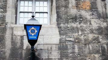 'Gardaí are here to listen and to help' victims of domestic violence, says Granard Garda chief