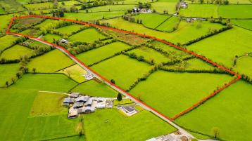 44 acre residential beef farm in Longford sells for €455,000 following competitive online auction