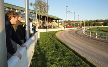 Longford Greyhound track to reopen on Monday night