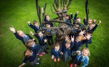 Primary Schools in Longford encouraged to plant an Oak Tree this Tetra Pak Tree Day