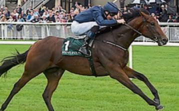 THE PUNTER'S EYE: Four horses to crown the Curragh's Irish Guineas weekend