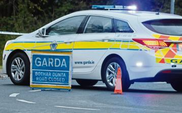 Gardaí appealing for witnesses after woman dies in midlands collision