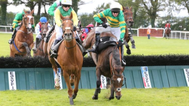 THE PUNTER'S EYE: Galway Races Tips - Day 1 - Monday, July 30