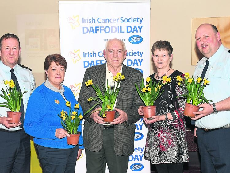 Daffodil Day tomorrow to raise funds for Irish Cancer Society