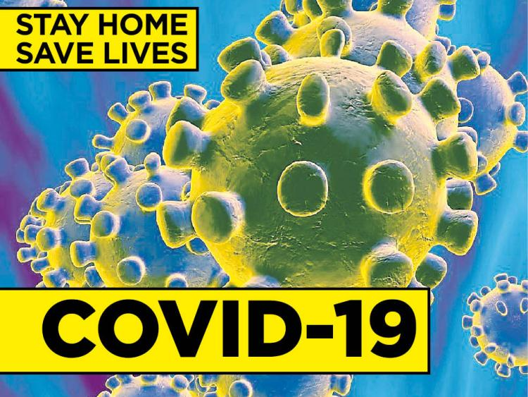 29 more deaths confirmed from Coronavirus
